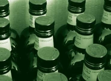 L'Extravergine di altissima qualità riduce la proliferazione del tumore alla vescica