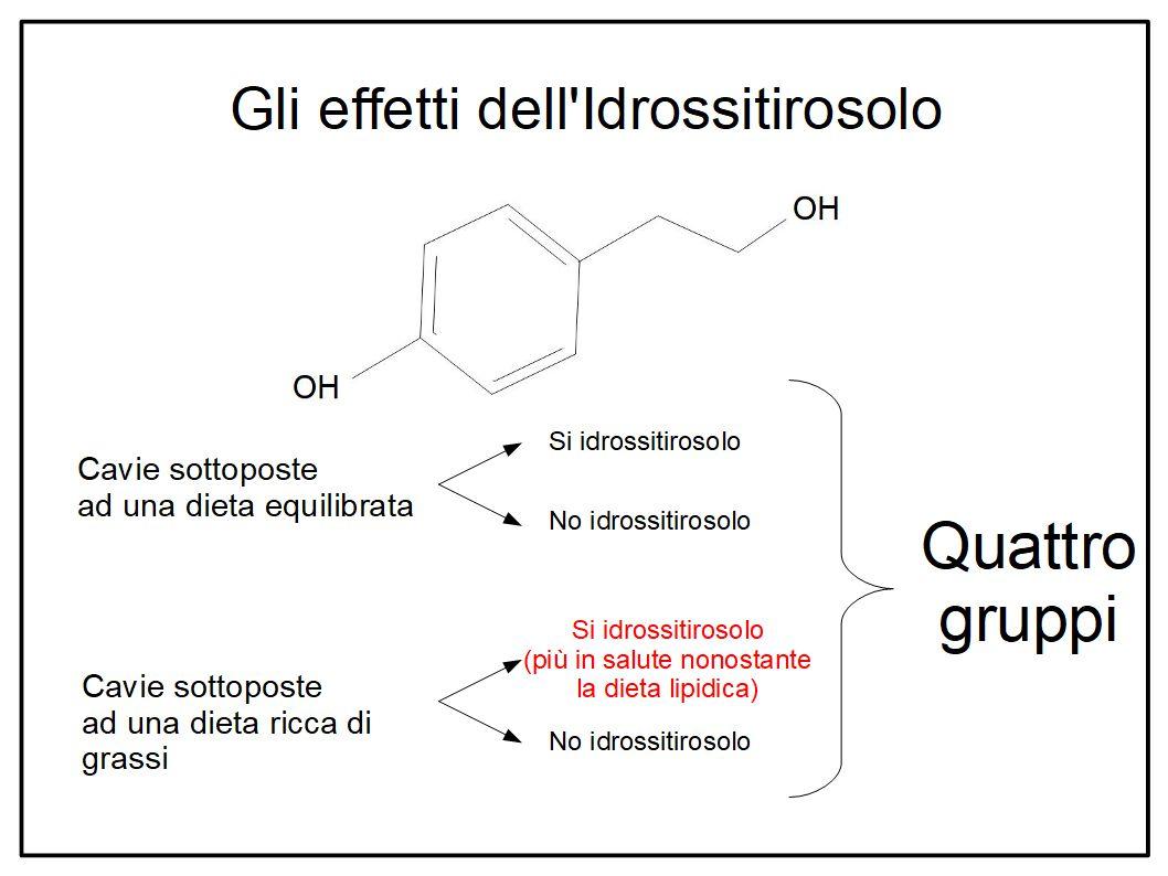 Fegato ed arterie protette dall'Extravergine ad alto contenuto di idrossitirosolo