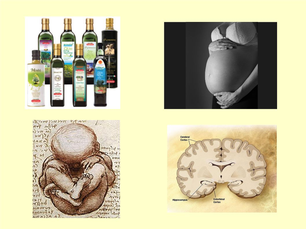 L'uso di Extravergine in gravidanza è positivo per la salute del nascituro