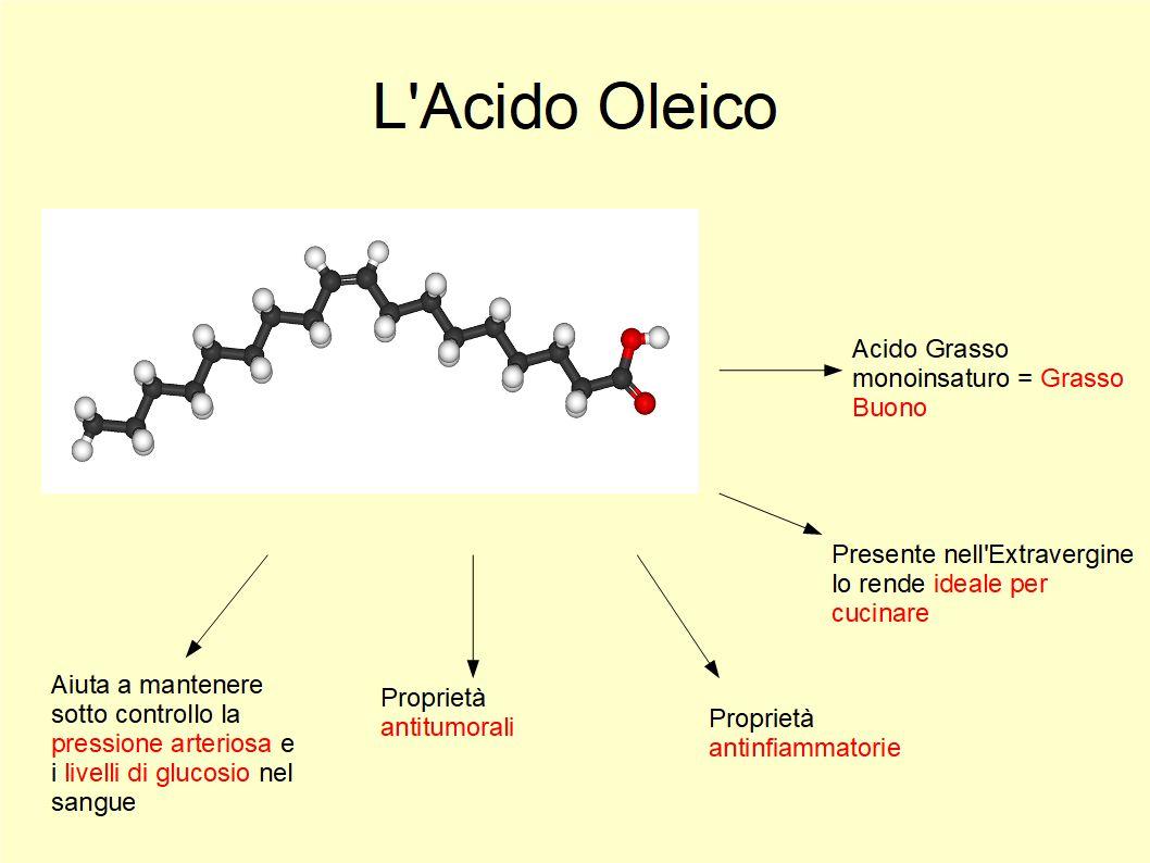 L'Acido Oleico aiuta a controllare il senso di fame e a mantenerci in forma