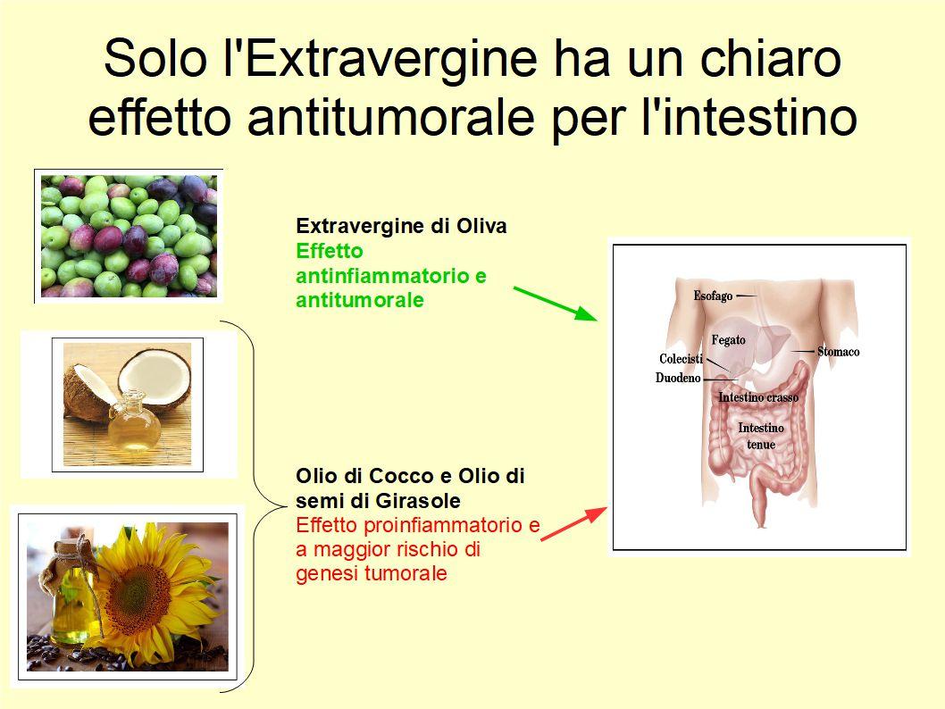 Nel prevenire il tumore intestinale l'Extravergine non ha rivali