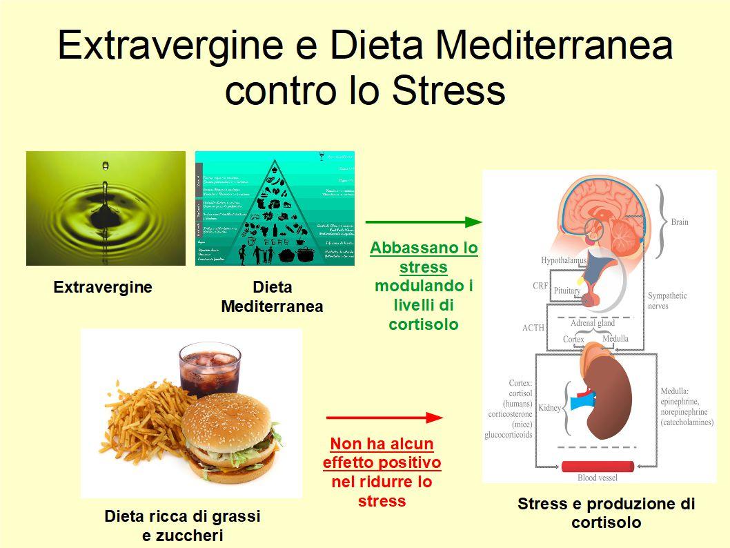 Una dieta equilibrata e ricca di Extravergine combatte lo Stress